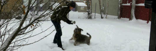 Dave Burdick plays with a brown dog in the snow.